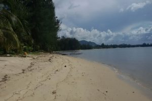 samui-land-for-sale-by-thai-real-com1