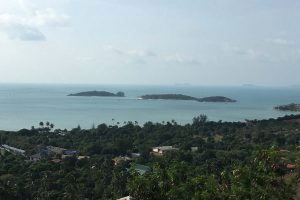 samui-land-for-sale-by-thai-real-com3