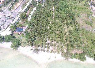 9 Rai For Sale Koh Samui Huatanon Beach (Thai-Real.com)