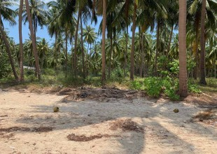 Beach Land For Sale Laem Yai, Koh Samui (Thai-Real.com)