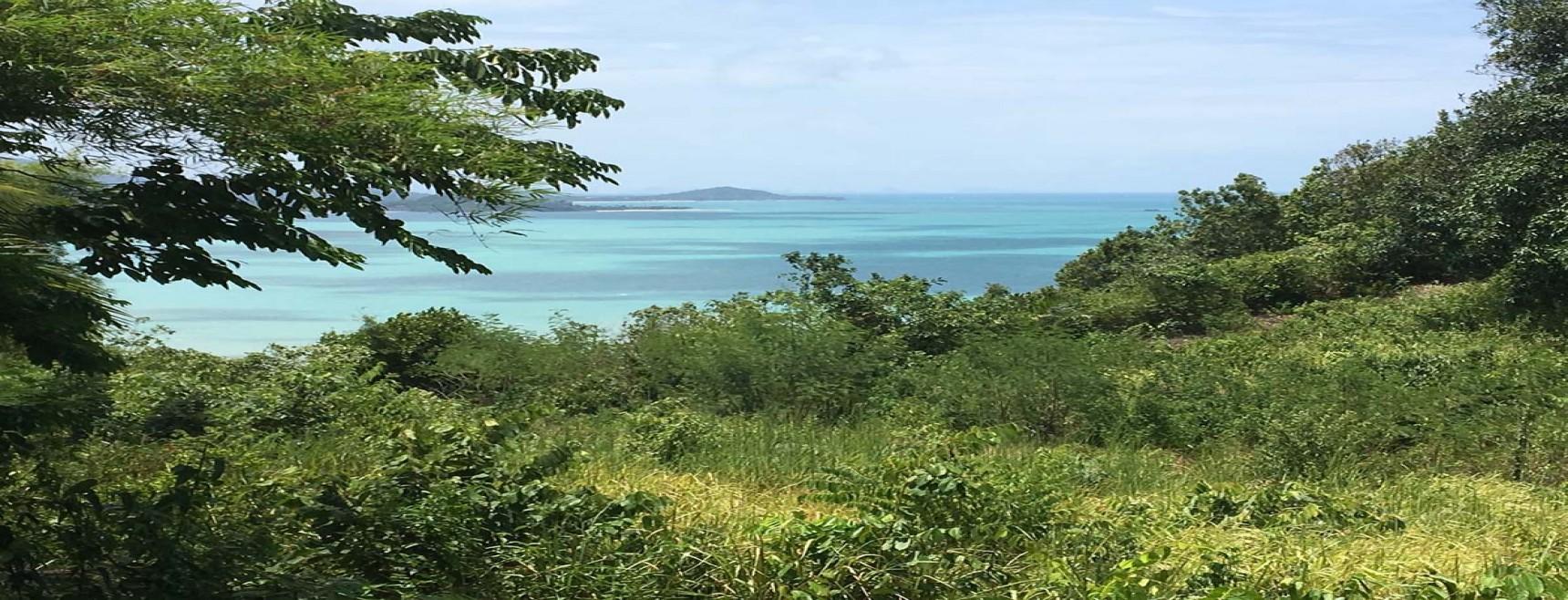 4 Rai Sea View Land Plai Laem Koh Samui (Thai-Real.com)